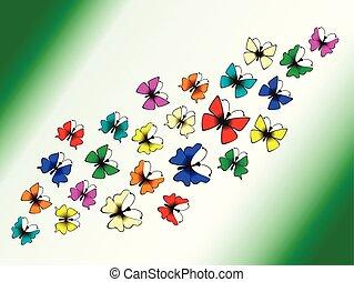 hell, vlinders, auf, a, weißer hintergrund
