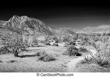 Hellhole Canyon in Black and White