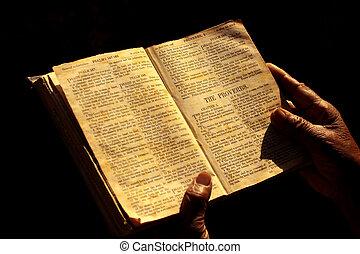 hellig bibel
