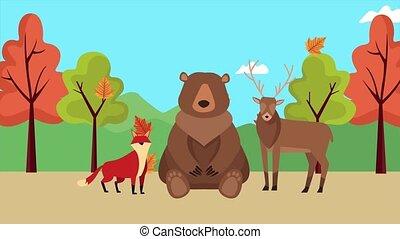 hello autumn animation with bear and woodland animals ,4k ...