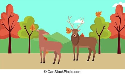 hello autumn animation with reindeer couple in forest scene...