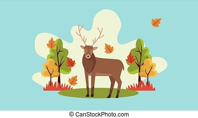 hello autumn animation with reindeer in forest scene ,4k ...