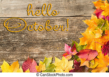 HELLO AUTUMN greeting card. Autumn maple leaves background.