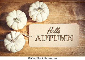 Hello Autumn message with small white pumpkins