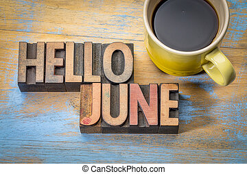 Hello June word abstract in wood type