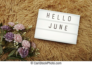 Hello June word in light box and flower bouquet
