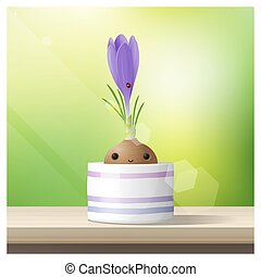 Hello Spring background with Spring flower Crocus growing in a pot on wooden table top 1