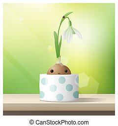Hello Spring background with Spring flower Snowdrop growing in a pot on wooden table top 1