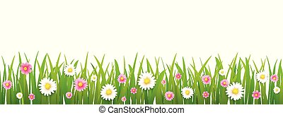 hello spring flower with grass isolated background.