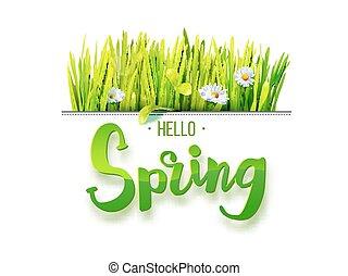 Hello Spring on white background