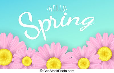 Hello spring phrase. Seasonal background. Pink camomiles flowers on a blue background. Vector illustration