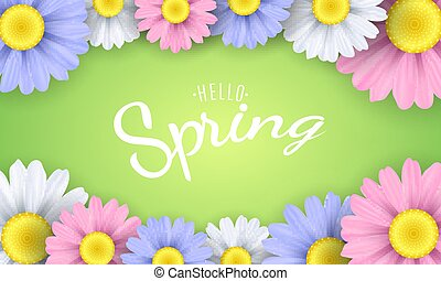 Hello spring phrase. Seasonal poster. Multicolor camomile flowers on a green background. Vector illustration