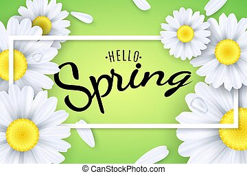 Hello spring. Seasonal poster. Camomiles flowers on a light green background. Text in a frame. Falling petals and drops of water. Vector illustration