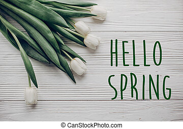 hello spring text fresh sign. flat lay. stylish white tulips on rustic wooden table background top view. space for text.