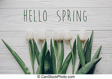 hello spring text fresh sign. flat lay. stylish white tulips on rustic wooden table background top view. soft light, tenderness atmospheric moment.