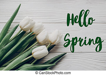 hello spring text fresh sign. stylish white tulips on rustic wooden table background top view. flat lay. soft light, tenderness atmospheric moment.