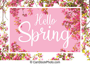 Hello Spring white text against a pink background with cherry blossom frame