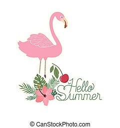 hello summer label with Flemish icon vector illustration design