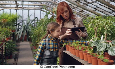 Helpful child is counting pot plants in spacious hothouse while her mother is entering data in tablet and talking to her daughter. Family business and agriculture concept.