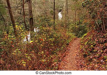 Helton Creek Falls Trail
