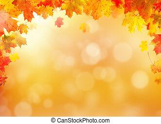 hely, szöveg, zöld, szabad, ősz, háttér