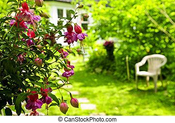 hem, och, trädgård