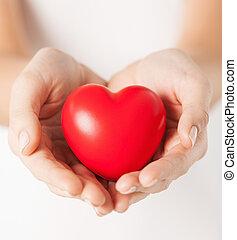 hembra entrega, con, pequeño, corazón rojo