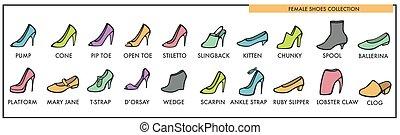 hembra, shoes, colección, de, todos, diseños, y, modelos