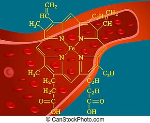 Heme structure - Illustration of heme structure, an...