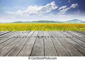 hemel, lege, wildflower, plank, achtergrond