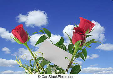 hemels, rozen, aantekening, leeg