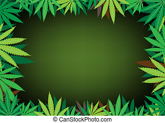 hemp dark background - The green hemp, cannabis leaf dark...
