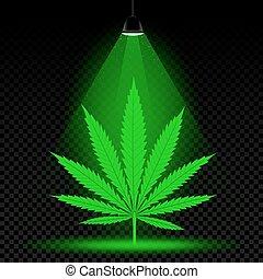 hemp leaf lamp light