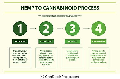 Hemp to cannabinoid process horizontal infographic