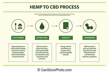 Hemp to CBD Process horizontal infographic