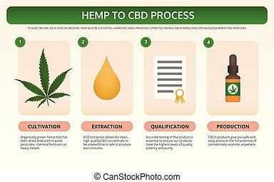 Hemp to CBD Process horizontal textbook infographic