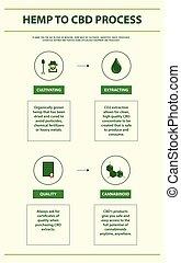 Hemp to CBD Process vertical infographic