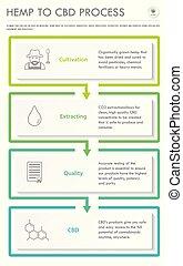 Hemp to CBD Process verticall business infographic