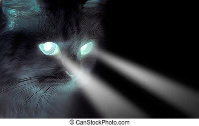 hemsökt av spöken, ögon, lysande, svart katt