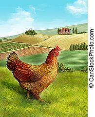 Hen and farm - Hen in a beautiful rural landscape. Digital...