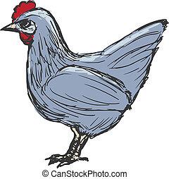 hen, farm bird