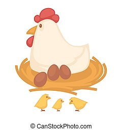 Hen sitting eggs and chicken hatch on nest farm fowl vector...