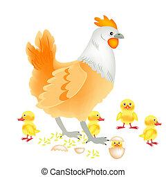 Hen with newborn nestling on white background