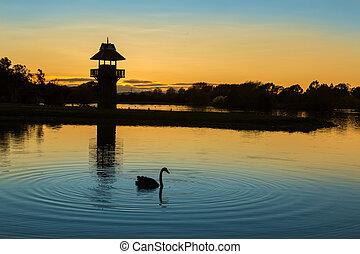 Henly Lake Dawn