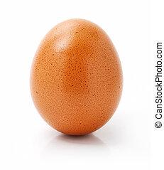 hen's egg isolated on white