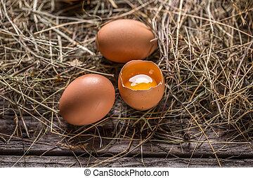 hen's, eitjes, bruine