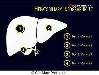 Hepatobiliary Infographic . Flat design .