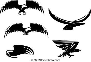 heráldica, águia, símbolos, e, tatuagem