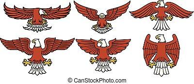 heráldico, norteamericano, águilas, iconos, conjunto