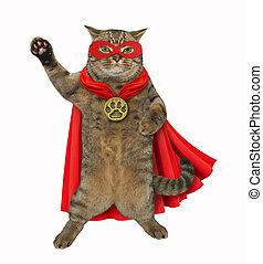 herói super, gato